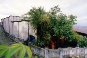 O Vila até 1998...